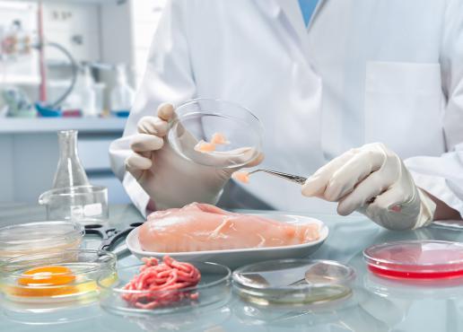 Laurea in scienze e tecnologie alimentari