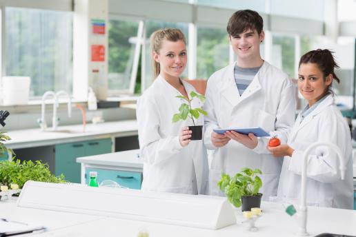 Scienze gastronomiche